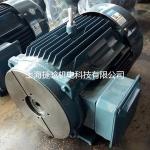 YE2-200L-4/30KW-4P�ڲ�ʽҺѹ�õ��