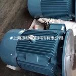 YE2-160L-4/15KW-4P直插式液压泵电机