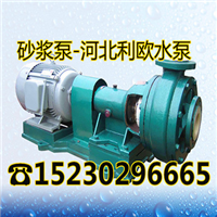 耐腐污水砂浆泵100UHB-ZK-100-40衬氟化工泵