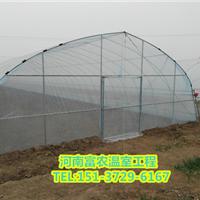 三门峡几型钢温室大棚【河南富农工程】三门峡几型钢温室大棚安装