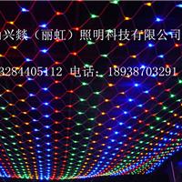 供应灯会灯海灯光节灯具,LED网灯