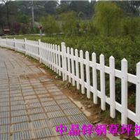 供应新沂热镀锌喷塑草坪护栏厂家