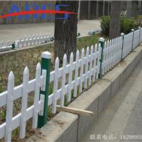 白银pvc草坪护栏 型钢护栏 厂家 报价