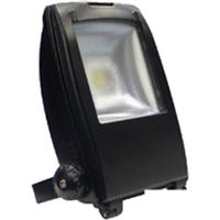 供应腾博光电泛光灯TB-FL-30C