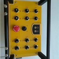厂家南京帝淮24回路架桥机起重机遥控器