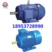 Y2-315L1-4三相异步电动机