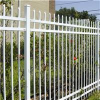 直销姜堰镀锌钢喷塑围墙栅栏价格