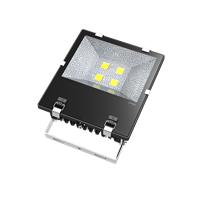 东麒电子厂供应大功率工程200WLED投光灯