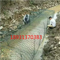 海南河道石笼网--护坡铁丝网-生态绿化用网