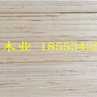 郑州免熏蒸木方最新报价 18553425136