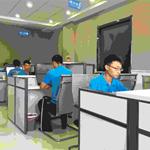 山东舵手网络科技有限公司