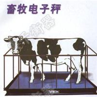 1000kg犊牛畜牧秤