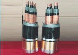 津成电线电缆,高压电缆,阻燃电缆ZRYJV22