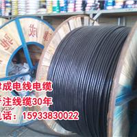 衡水津成电缆电线,阻燃电线电缆,ZRYJV