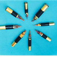 衡水津成阻燃控制电缆,KVV,KVVP,KVVP22