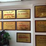 南宁中庭装饰荣誉证书