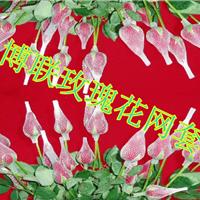 供应厂家 玫瑰花塑料保护网套