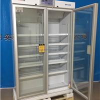 供应英鹏医用冷藏箱 2-8℃医用冰箱