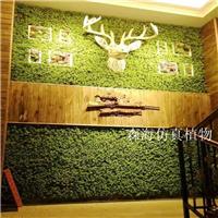 供应仿真尤加利植物墙草坪绿植装饰背景墙