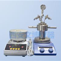 微型高压反应釜,磁力高压反应釜