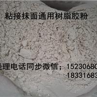 高粘度胶粉  可分散性乳胶粉...