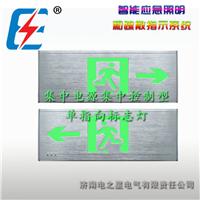 集中电源控制型消防应急单面单指向标志灯