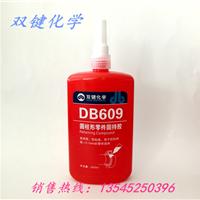 武汉双键DB609固持胶