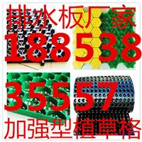 长沙塑料植草格排水板集团生产厂家