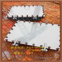 供应水平/垂直吊盖板式平焊法兰人孔