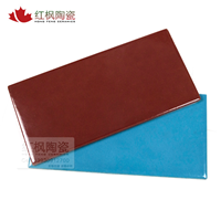 红枫国际标准泳池砖 泳池专用砖 泳池砖