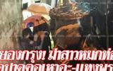 缅甸女子曼谷街头惨遭杀害 尸体被塞排水管里-排水管绿色