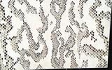 丽舍宫艺术涂料·施工现场-艺术涂料施工视频