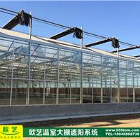 供应哈尔滨木耳 蘑菇大棚 纯建造工厂