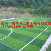 湘西人造草皮价格足球场人造草铺装湖南一线