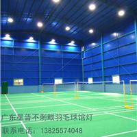 专业羽毛球场灯光设计,替换刺眼LED灯