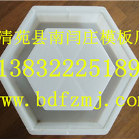 供应六角护坡塑料模具