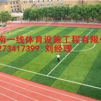 湘西人造草皮施工单位施工报价湖南一线体育
