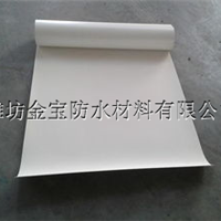 供应盛华牌1.2mm国标TPO防水卷材