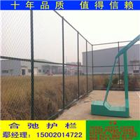 武威市筛网工厂-篮球场护栏网规格-含运费