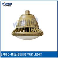 供应BAD85-M防爆高效节能LED灯