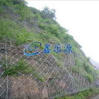 蜘蛛边坡防护网用于泥石流带来的破坏