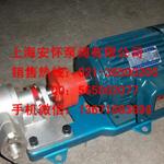 供应KCB-300齿轮输油泵 齿轮泵排量