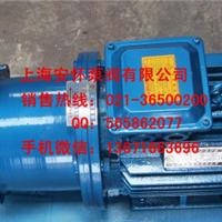 供应上海32CQ-25磁力泵的应用尺寸专业的