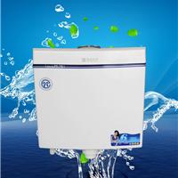 双按厕所水箱塑料马桶水箱节能
