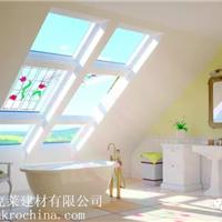 供应FAKRO斜屋顶天窗PTP塑钢窗