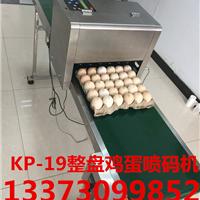 山东省科力普整盘鸡蛋六喷头喷码机打码机