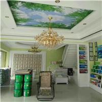 室内墙面涂料/大自然涂料招商/内墙涂料代理/广东涂料招商