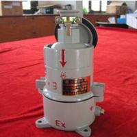 AC-16防爆插销工业插头插座插接装置