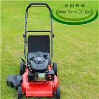供应 GX160便携式割草机打草机