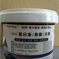 供应TGA天冬聚脲防护涂料AR-9529